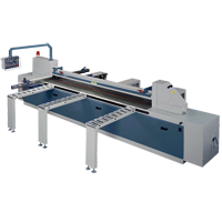 Hrizontal Panel Saw for Sale